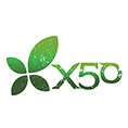 Green Tea X50 voucher codes